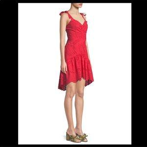Parker Odysseia Sleeveless Eyelet Mini Dress